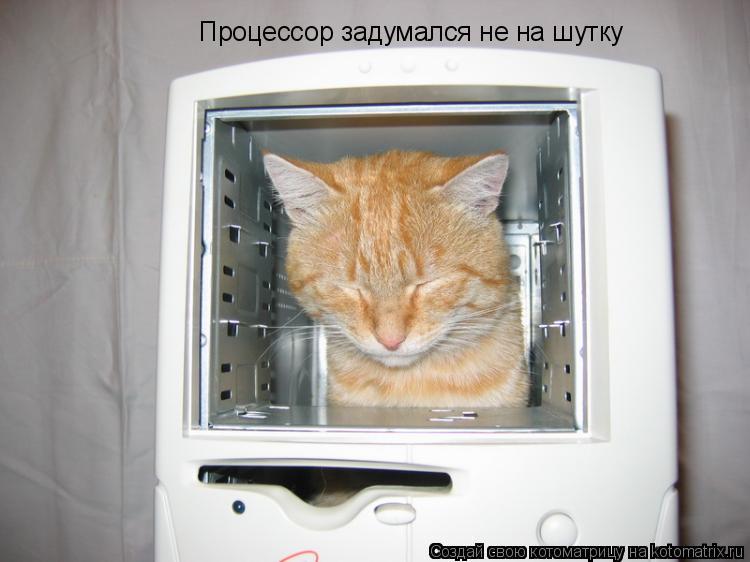 Котоматрица: Процессор задумался не на шутку