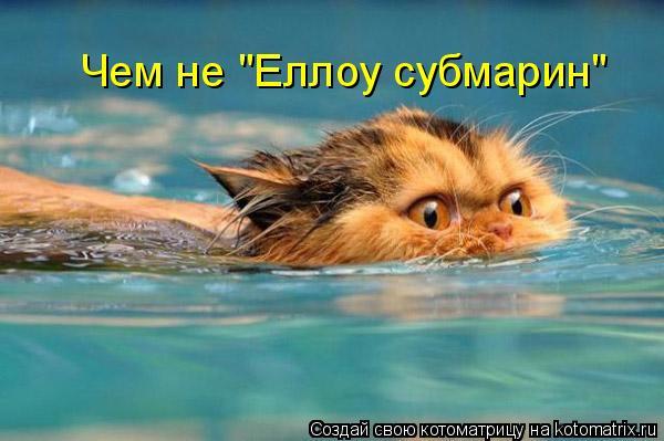 """Котоматрица: Чем не """"Еллоу субмарин"""""""