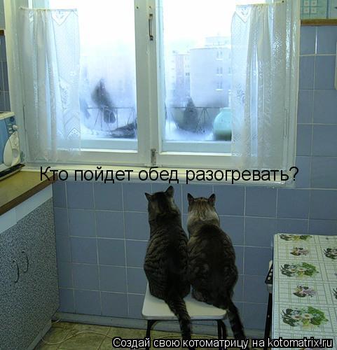 Котоматрица: Кто пойдет обед разогревать?