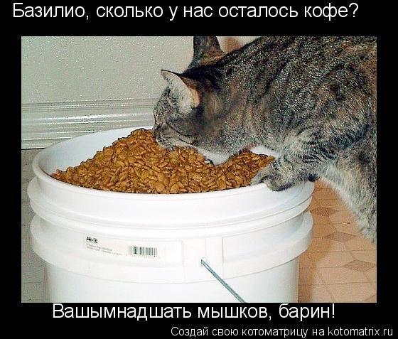 http://kotomatrix.ru/images/lolz/2010/03/24/524627.jpg