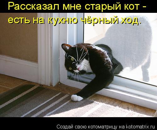 Котоматрица: Рассказал мне старый кот - есть на кухню чёрный ход.