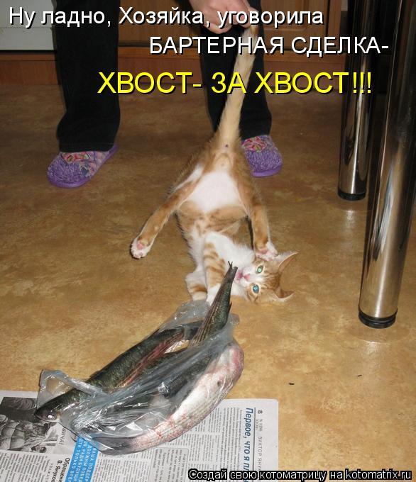 Смотреть проно госпожа заставила лизать бесплатно русское 13 фотография