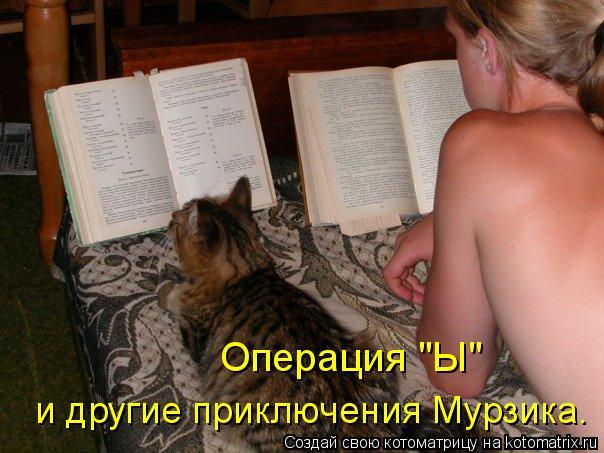 "Котоматрица: Операция ""Ы"" и другие приключения Мурзика."