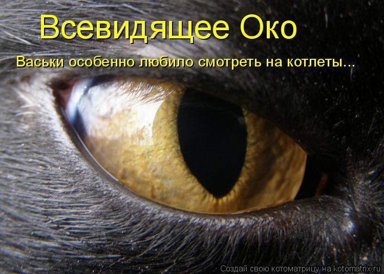 Котоматрица: Всевидящее Око Васьки особенно любило смотреть на котлеты...