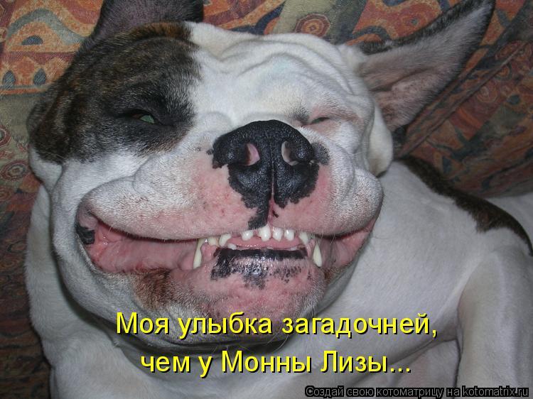 Котоматрица: Моя улыбка загадочней,  чем у Монны Лизы...