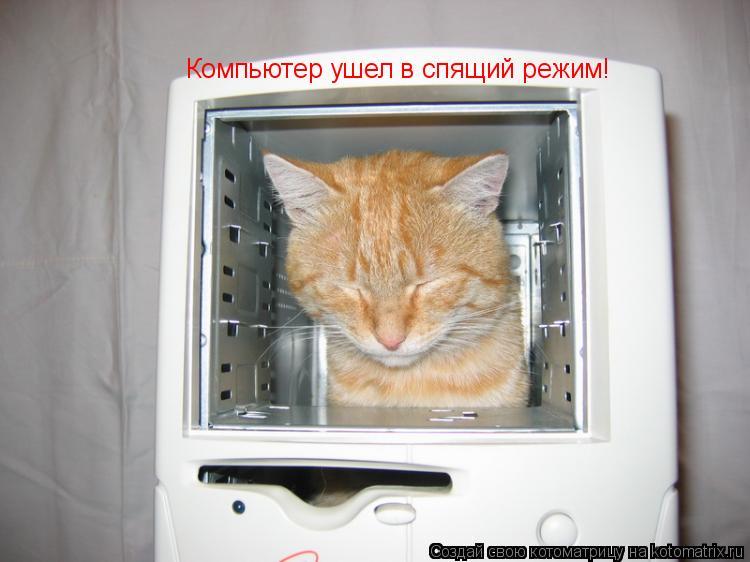 Котоматрица: Компьютер ушел в спящий режим!
