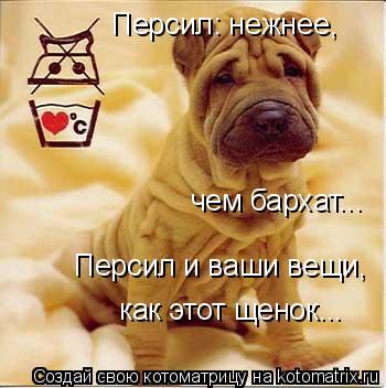 Котоматрица: Персил: нежнее,  чем бархат... Персил и ваши вещи,  как этот щенок...