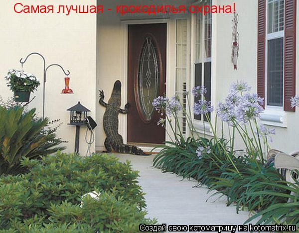Котоматрица: Самая лучшая -  крокодилья охрана!