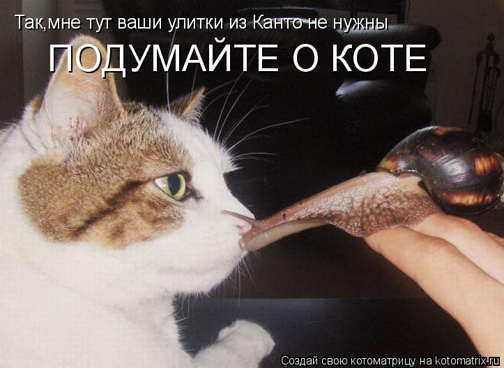 Котоматрица: Так,мне тут ваши улитки из Канто не нужны ПОДУМАЙТЕ О КОТЕ