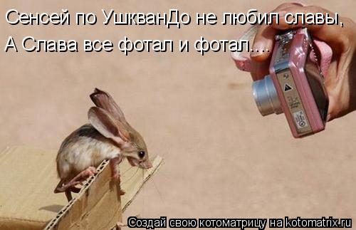 Котоматрица: Сенсей по УшкванДо не любил славы, А Слава все фотал и фотал....
