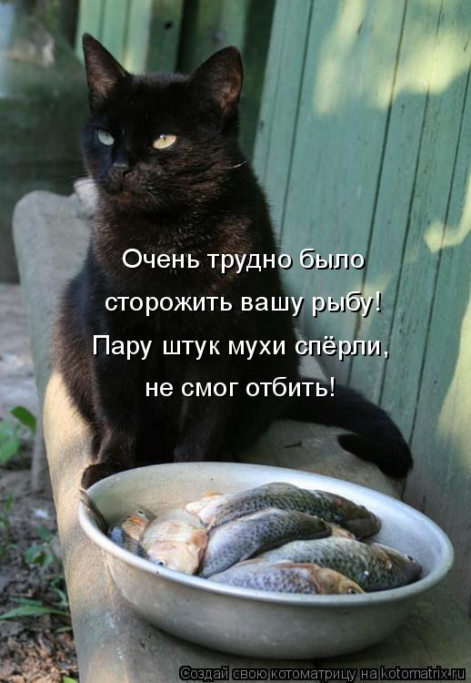 http://kotomatrix.ru/images/lolz/2010/03/27/527565.jpg