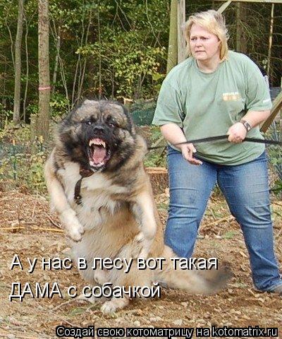 Котоматрица: А у нас в лесу вот такая  ДАМА с собачкой