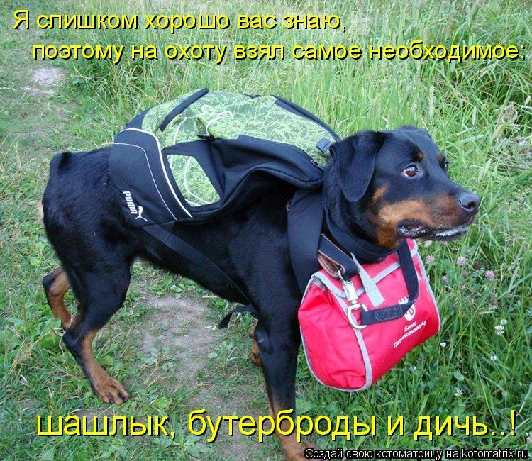 Котоматрица: Я слишком хорошо вас знаю, поэтому на охоту взял самое необходимое: шашлык, бутерброды и дичь..!