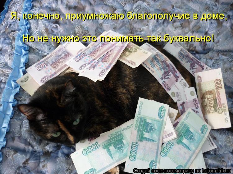 Котоматрица: Я, конечно, приумножаю благополучие в доме,  Но не нужно это понимать так буквально!
