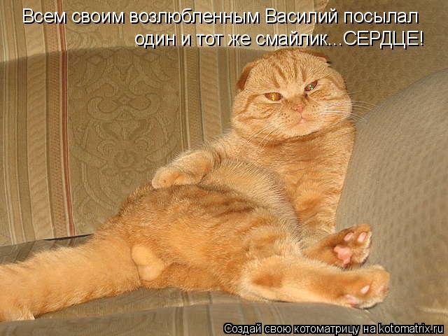 Котоматрица: Всем своим возлюбленным Василий посылал один и тот же смайлик...СЕРДЦЕ!