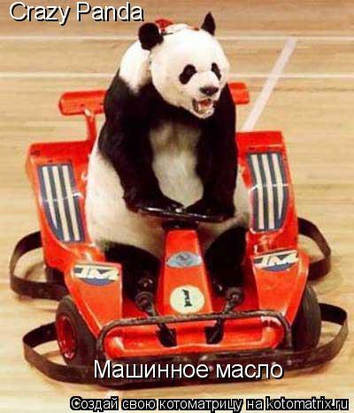 Котоматрица: Crazy Panda Машинное масло