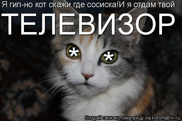 Котоматрица: * * Я гип-но кот скажи где сосиска!И я отдам твой ТЕЛЕВИЗОР