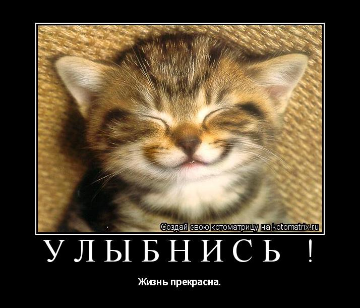 Котоматрица: Улыбнись ! Жизнь прекрасна.