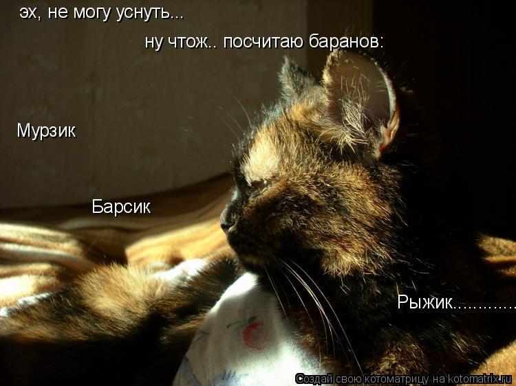 Котоматрица: эх, не могу уснуть... ну чтож.. посчитаю баранов: Мурзик Барсик             Рыжик..............