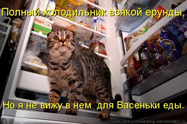 Котоматрица: Полный холодильник всякой ерунды, Но я не вижу в нем  для Васеньки еды.