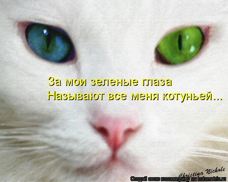 Котоматрица: За мои зеленые глаза Называют все меня котуньей...