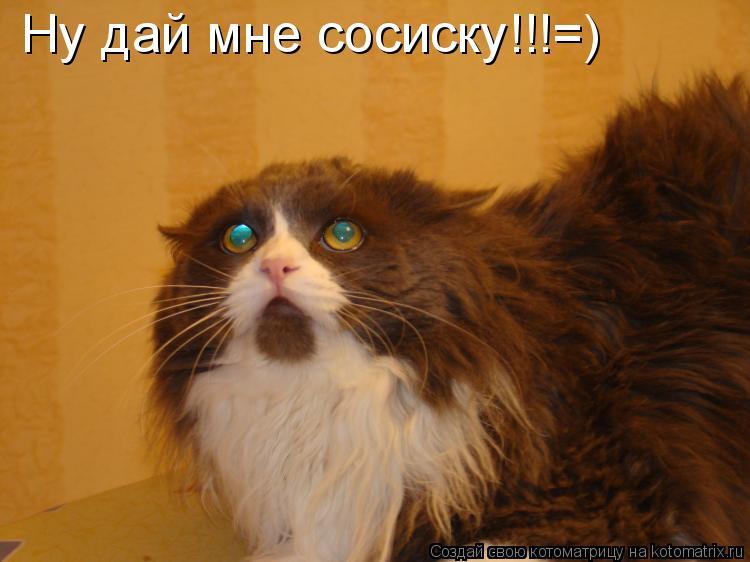 Котоматрица: Ну дай мне сосиску!!!=)