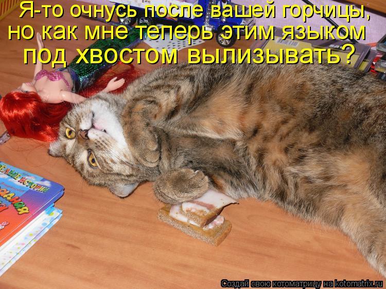 Котоматрица: Я-то очнусь после вашей горчицы,  но как мне теперь этим языком  под хвостом вылизывать?