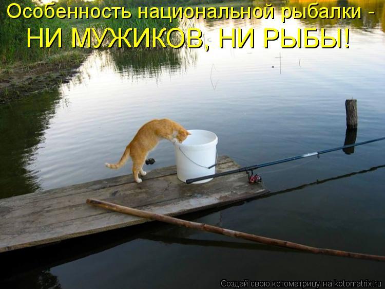 Котоматрица: Особенность национальной рыбалки -  НИ МУЖИКОВ, НИ РЫБЫ!