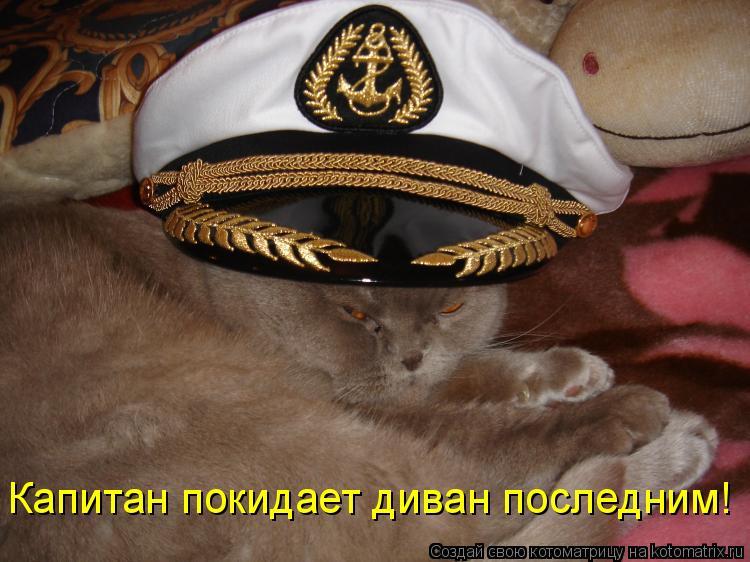 Котоматрица: Капитан покидает диван последним!