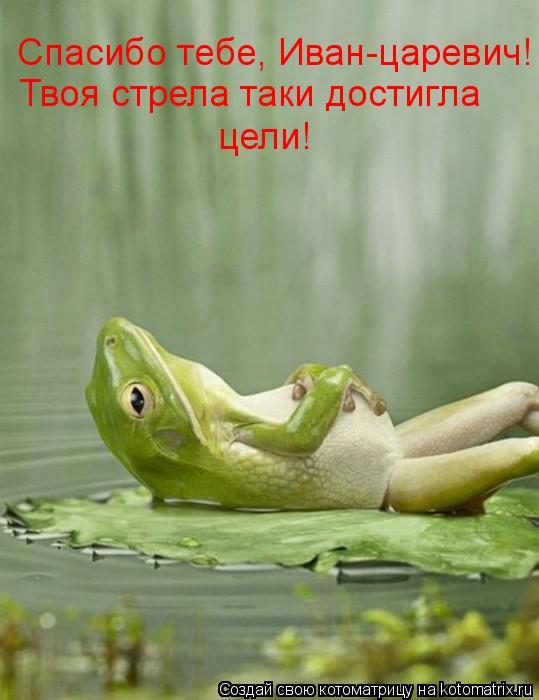Котоматрица: Спасибо тебе, Иван-царевич! Твоя стрела таки достигла цели!