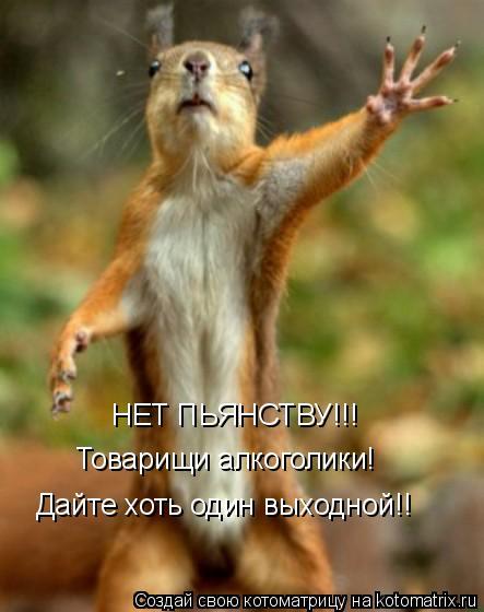 Котоматрица: НЕТ ПЬЯНСТВУ!!! Товарищи алкоголики! Дайте хоть один выходной!!