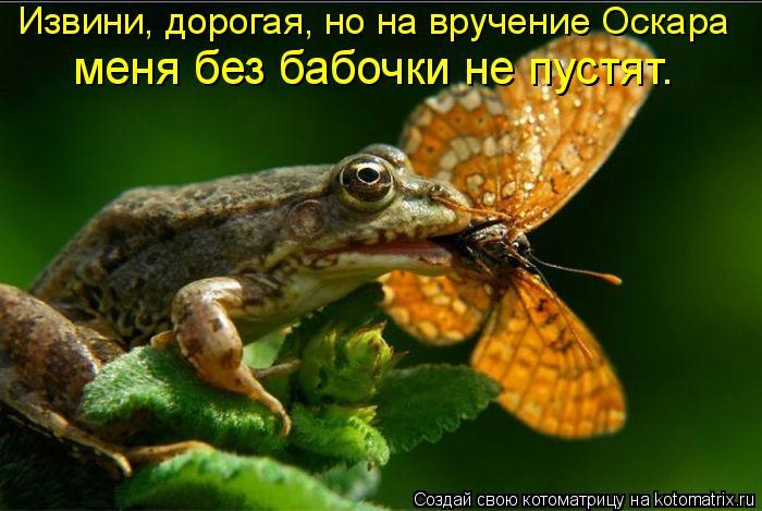 Котоматрица: Извини, дорогая, но на вручение Оскара  меня без бабочки не пустят.