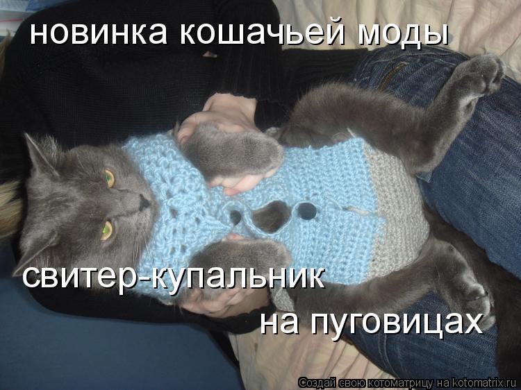 Котоматрица: новинка кошачьей моды свитер-купальник на пуговицах