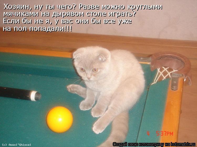 Котоматрица: Хозяин, ну ты чего? Разве можно круглыми мячиками на дырявом столе играть? Если бы не я, у вас они бы все уже на пол попадали!!!