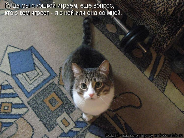 Котоматрица: Когда мы с кошкой играем, еще вопрос,  кто с кем играет - я с ней или она со мной.