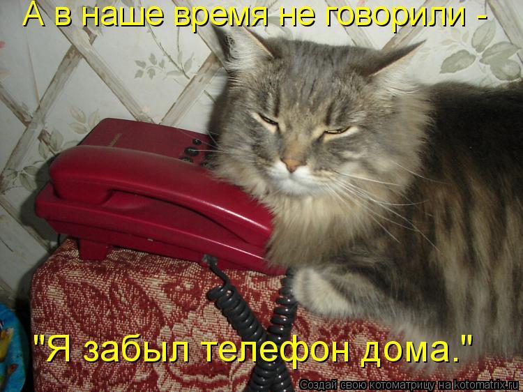 """Котоматрица: А в наше время не говорили -  """"Я забыл телефон дома."""""""