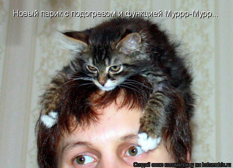 Котоматрица: Новый парик с подогревом и функцией Муррр-Мурр...