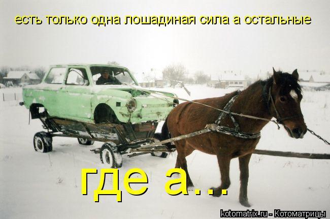 Котоматрица: есть только одна лошадиная сила а остальные где а...