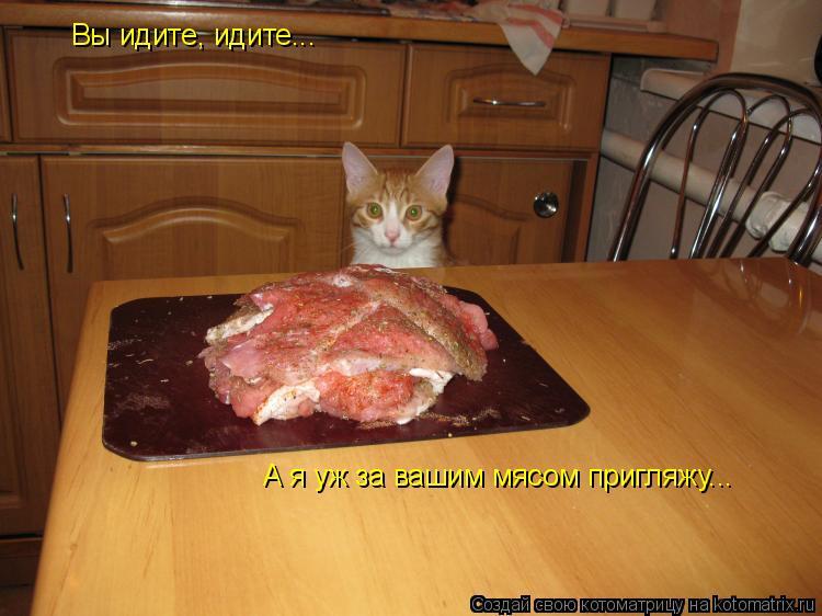 Котоматрица: Вы идите, идите... А я уж за вашим мясом пригляжу...