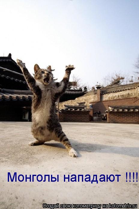 Котоматрица: Монголы нападают !!!!