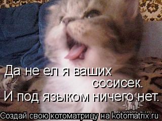 Котоматрица: Да не ел я ваших   сосисек. И под языком ничего нет.