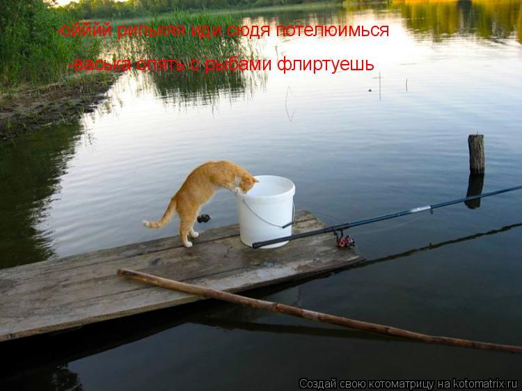 Котоматрица: -ойййй рипькяя иди сюдя потелюимься -васька опять с рыбами флиртуешь