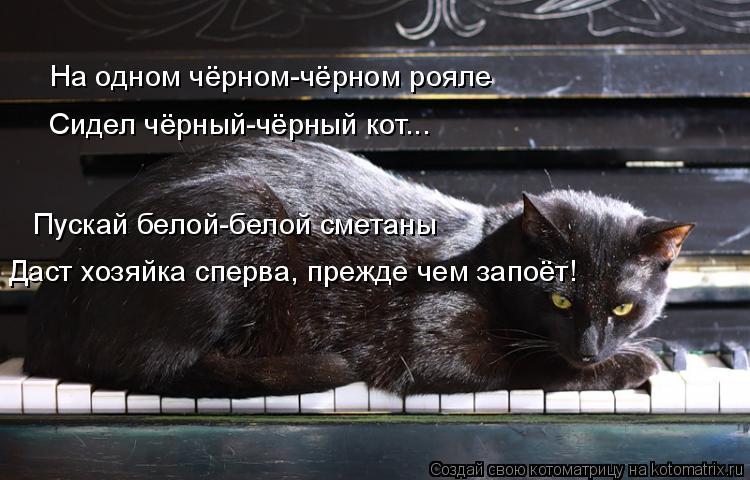 Котоматрица: На одном чёрном-чёрном рояле Сидел чёрный-чёрный кот... Пускай белой-белой сметаны Даст хозяйка сперва, прежде чем запоёт!
