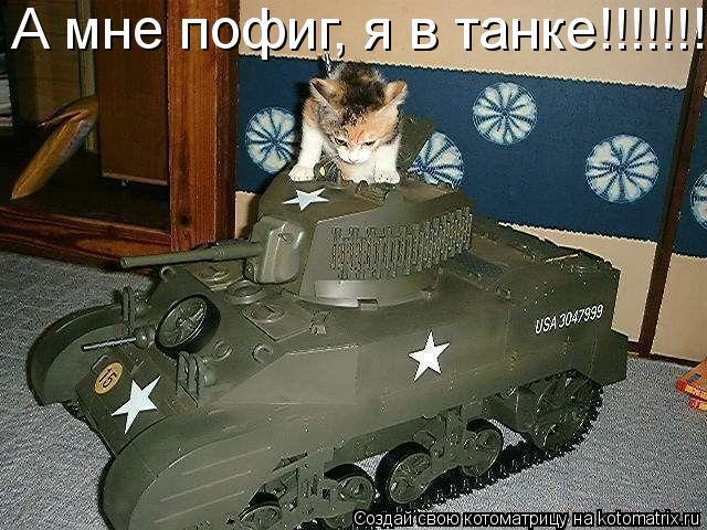 Котоматрица: А мне пофиг, я в танке!!!!!!!!