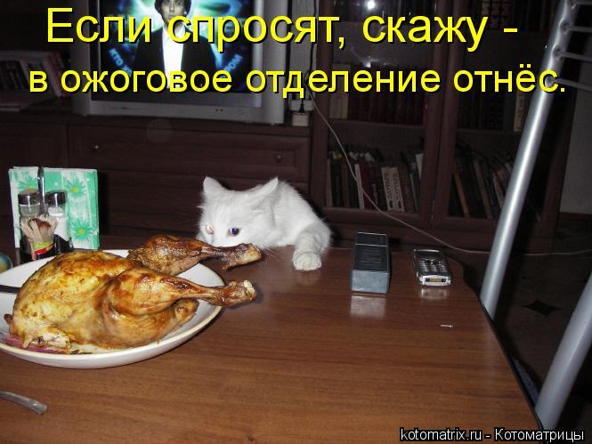 Котоматриця!)))) - Страница 2 532152