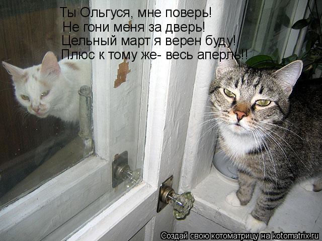 Котоматрица: Ты Ольгуся, мне поверь! Не гони меня за дверь! Цельный март я верен буду! Плюс к тому же- весь аперль!!