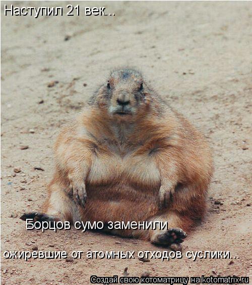 Котоматрица: Наступил 21 век... Борцов сумо заменили  ожиревшие от атомных отходов суслики...