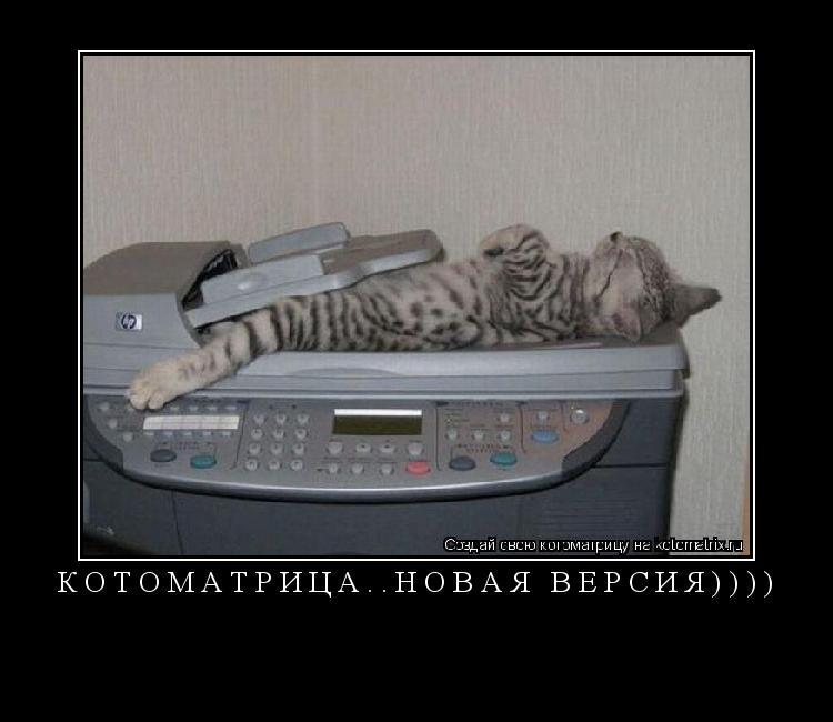 Котоматрица: КОТОМАТРИЦА..НОВАЯ ВЕРСИЯ))))