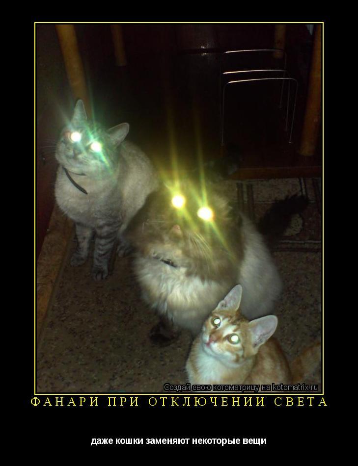 Котоматрица: фанари при отключении света даже кошки заменяют некоторые вещи