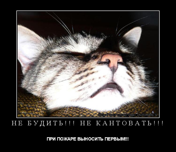 Котоматрица: НЕ БУДИТЬ!!! НЕ КАНТОВАТЬ!!! ПРИ ПОЖАРЕ ВЫНОСИТЬ ПЕРВЫМ!!!